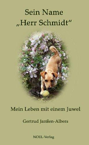 Book Cover: Sein Name: Herr Schmidt